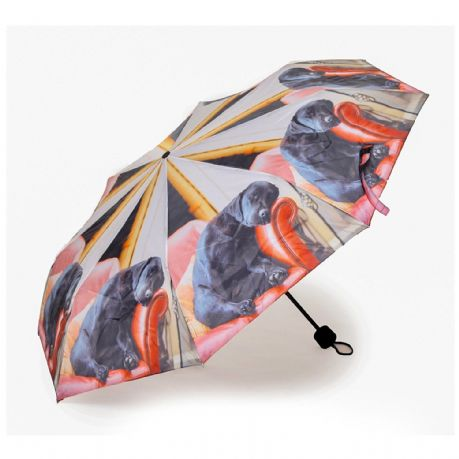 Folding Umbrella Sleeping Labrador Design Quality Brolly by Country Matters New